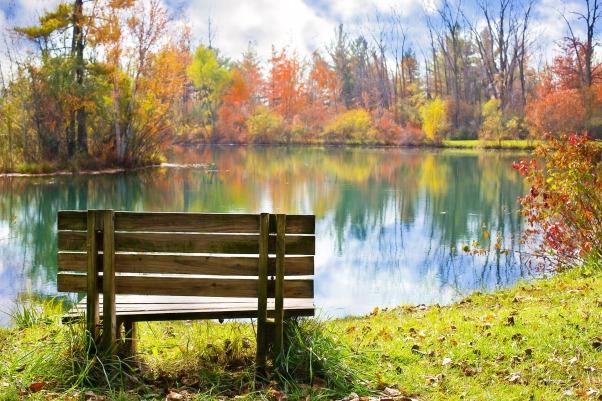 wood-bench-986347_1920